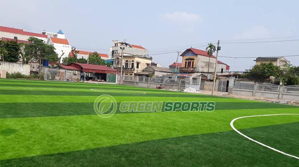 Bao lâu thay cỏ cho sân bóng